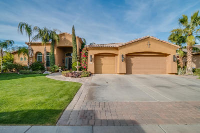 Apache Junction, Chandler, Gilbert, Mesa, Queen Creek, San Tan Valley Single Family Home For Sale: 1570 W Grand Canyon Drive