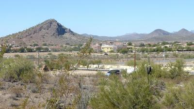 Peoria Residential Lots & Land For Sale: 92xx W Prickley Pear Trail