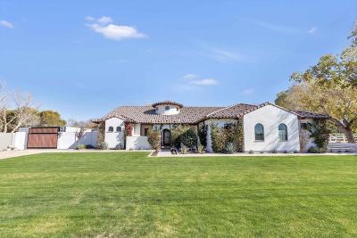 Gilbert Single Family Home For Sale: 20903 S 162nd Street