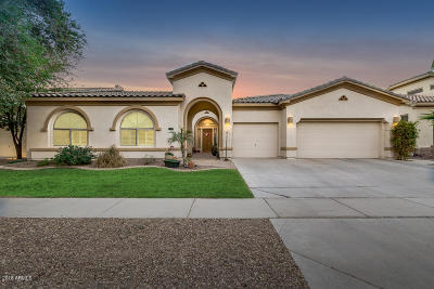 Gilbert Single Family Home For Sale: 4688 S Bandit Road