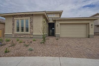 Peoria Single Family Home For Sale: 9348 W White Feather Lane