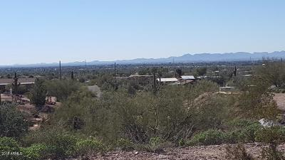 Apache Junction Residential Lots & Land For Sale: W Saddle Butte Street