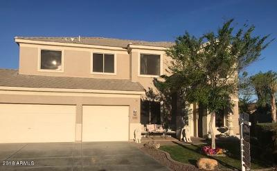Single Family Home For Sale: 26260 N 74th Drive