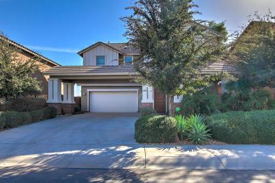 Maricopa Single Family Home For Sale: 40795 W Rio Grande Drive
