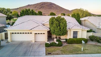 Glendale Single Family Home For Sale: 6340 W Donald Drive