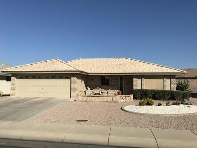 Mesa Single Family Home For Sale: 10902 E Kiva Avenue