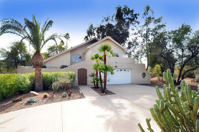 Fountain Hills Single Family Home For Sale: 11050 N Indian Wells Drive