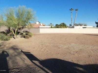 Tempe Residential Lots & Land For Sale: 1225 E Warner Road