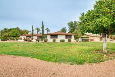 Litchfield Park Single Family Home For Sale: 301 N Palo Verde Drive