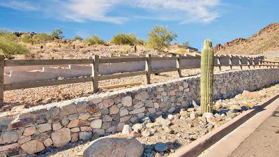 Paradise Valley Residential Lots & Land For Sale: 6750 N 39th Place