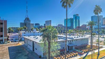 Phoenix Multi Family Home For Sale: 617 3rd Avenue