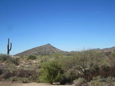 Scottsdale Residential Lots & Land For Sale: 39222 N 104th Place