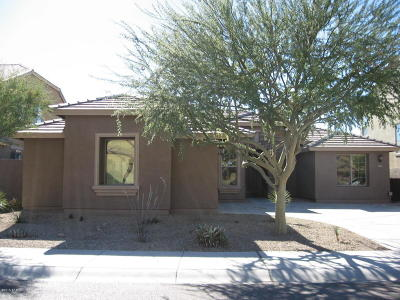 Goodyear Single Family Home For Sale: 18143 W Buckhorn Drive
