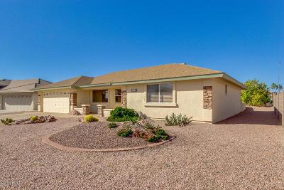 Mesa Single Family Home For Sale: 11346 E Milagro Avenue