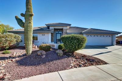 Mesa Single Family Home For Sale: 2705 S Copperwood Avenue