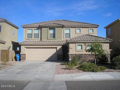 Laveen Single Family Home For Sale: 6213 S 43rd Drive