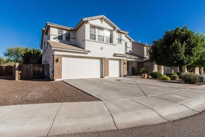 Phoenix AZ Single Family Home For Sale: $435,000