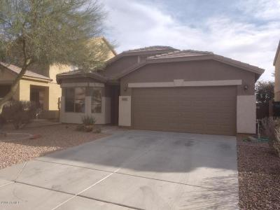 Maricopa Single Family Home For Sale: 36551 W Alhambra Street