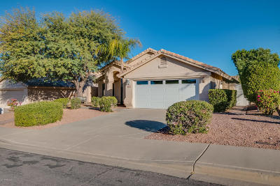 Mesa Single Family Home For Sale: 6364 E Virginia Street