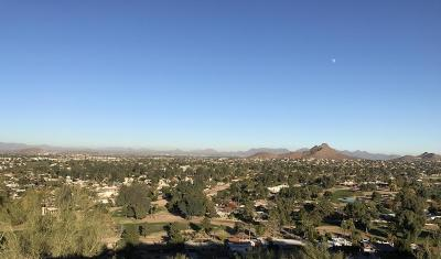 Phoenix Residential Lots & Land For Sale: 1538 E Lupine Avenue