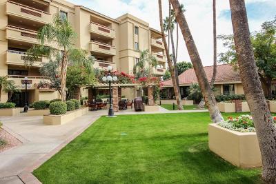 Scottsdale Apartment For Sale: 4200 N Miller Road #106