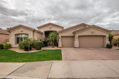 Chandler Single Family Home For Sale: 4556 S Jojoba Way