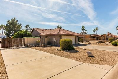 Litchfield Park Single Family Home For Sale: 12829 W Colter Street