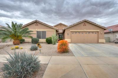 Casa Grande Single Family Home For Sale: 2416 E Firerock Drive