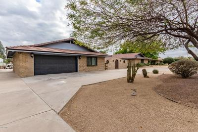 Peoria Single Family Home For Sale: 6721 W Gelding Drive