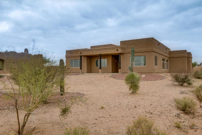 Single Family Home For Sale: 34804 N 143rd Street