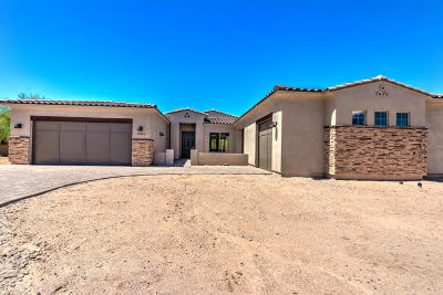 Gold Canyon Single Family Home For Sale: 8829 E Canyon Vista Drive