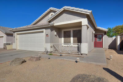 Chandler Single Family Home For Sale: 1328 E Binner Drive