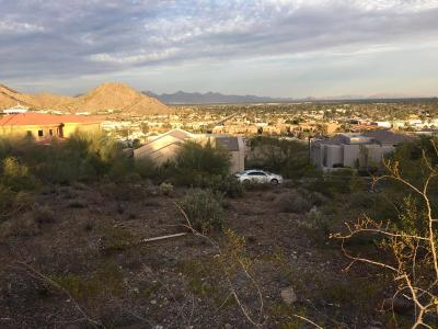 Phoenix Residential Lots & Land For Sale: 12846 N Nancy Jane Lane