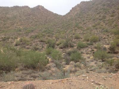 Scottsdale Residential Lots & Land For Sale: 14397 E Davenport Drive