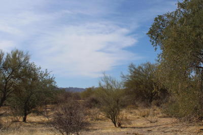 Scottsdale Residential Lots & Land For Sale: N 160th Street