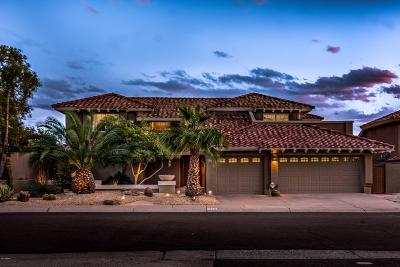Phoenix Single Family Home For Sale: 3129 E Rock Wren Road