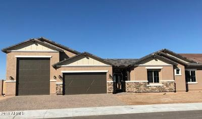 Cave Creek Single Family Home For Sale: 31530 N 41st Place