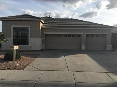 Surprise Single Family Home For Sale: 18003 W Camino Real Drive