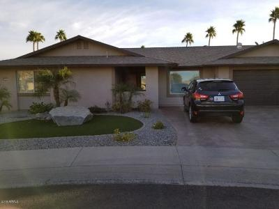 Sun City West Single Family Home For Sale: 17211 N 131st Drive