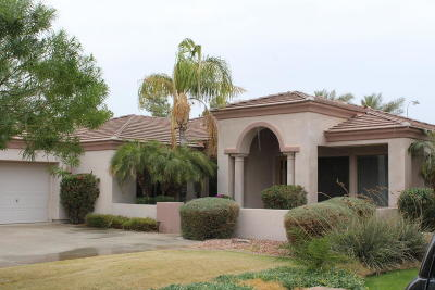 Chandler Single Family Home For Sale: 1972 W Mead Court