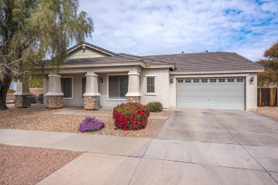 Queen Creek Single Family Home For Sale: 18506 E Ranch Road