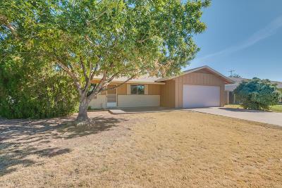Gilbert Single Family Home For Sale: 131 S Sahuaro Drive