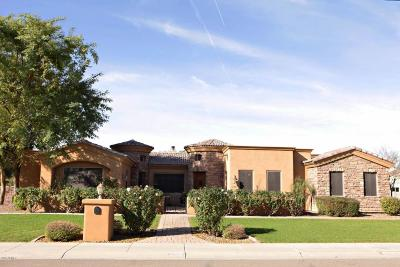 Queen Creek AZ Single Family Home For Sale: $555,000