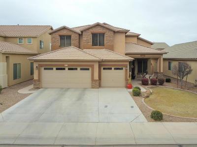 Maricopa Single Family Home For Sale: 46124 W Rainbow Drive