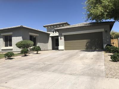 Surprise Single Family Home For Sale: 17870 W Carmen Drive
