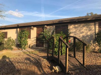 Phoenix Single Family Home For Sale: 2221 W Wayland Road
