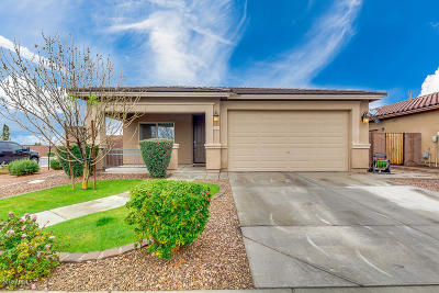 San Tan Valley Single Family Home For Sale: 1560 W Crape Road