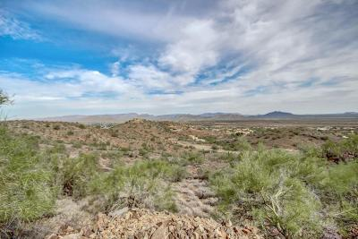 Phoenix Residential Lots & Land For Sale: 518 E Old West Way