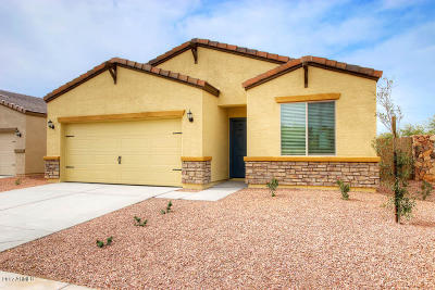 Phoenix Single Family Home For Sale: 4022 S 81st Drive