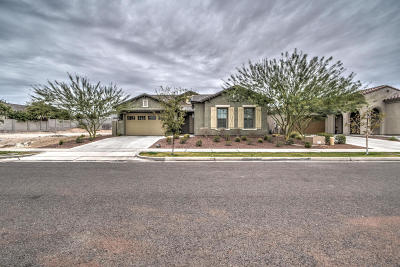 Buckeye AZ Single Family Home For Sale: $379,900